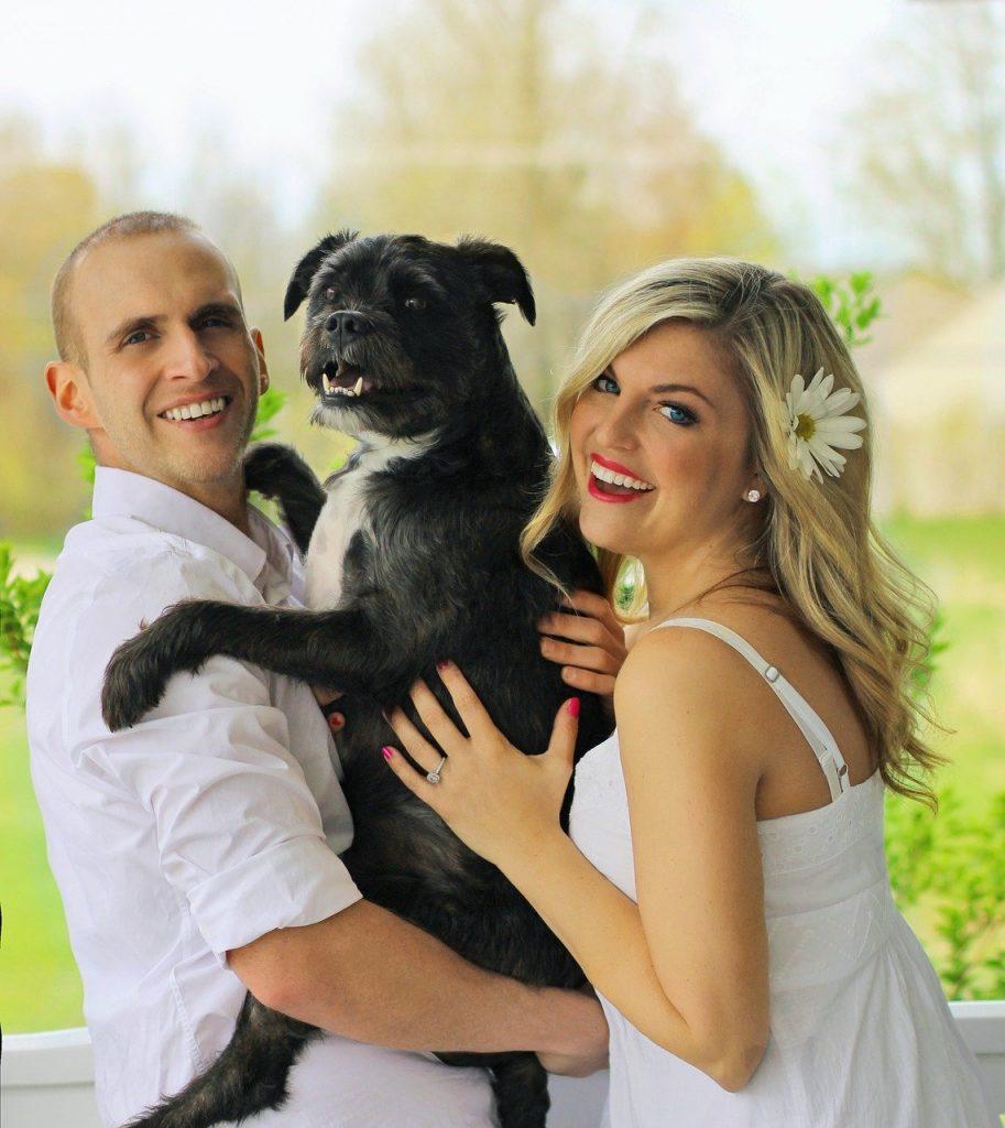happy family, dog family, pup